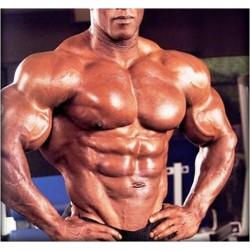Rutina de hipertrofia muscular